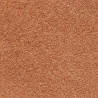 sr1, Brown, swatch-color